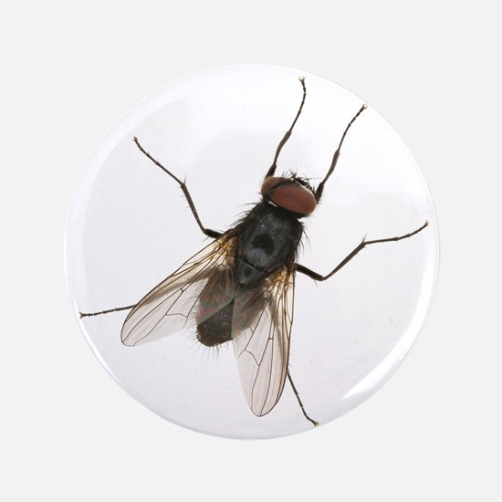 """Unique Bugs and insects 3.5"""" Button (100 pack)"""