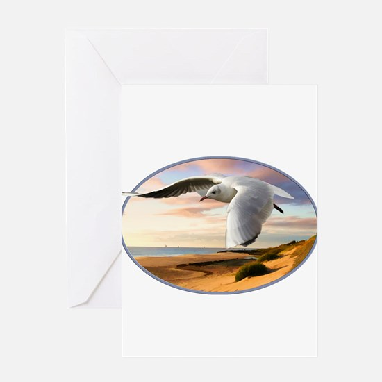gull on the wing over beach Greeting Cards