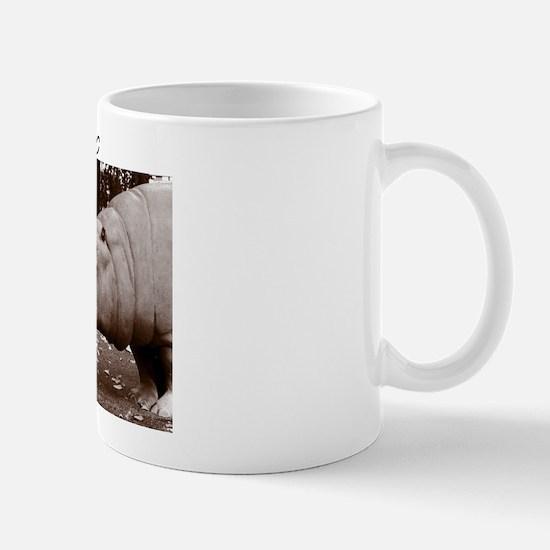 Hippos in Central Park Mug