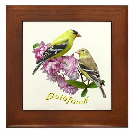 Goldfinch Framed Tile