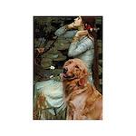 Ophelia & Golden Retriever Rectangle Magnet (10 pa