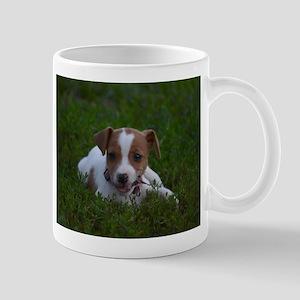 Jack Russell Puppy Mugs