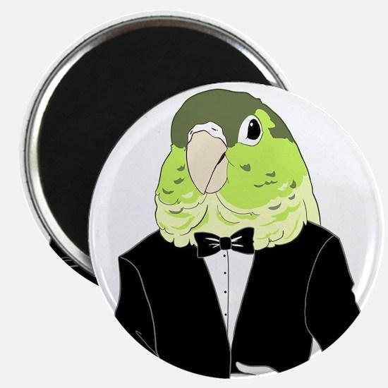 Green Cheek Conure Tuxedo Magnets