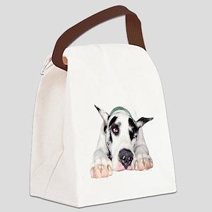 shyharletrns Canvas Lunch Bag