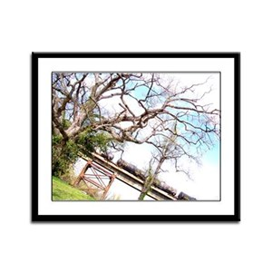 Train Bridge Through The Trees Framed Panel Print