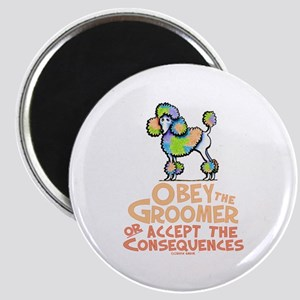 Obey The Groomer Magnets