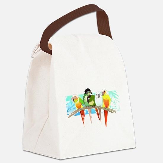 Cute Conure Canvas Lunch Bag
