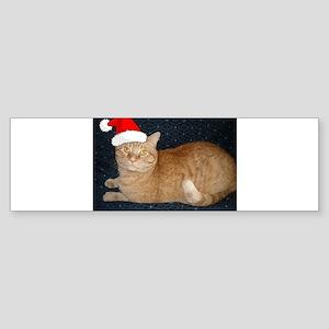 Christmas Orange Tabby Cat Sticker (Bumper)