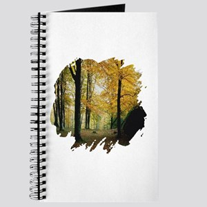 Autumn Woods Journal