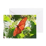 Orange Butterfly Aglow Greeting Card