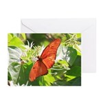 Orange Butterfly Aglow Greeting Cards (Pk of 10)