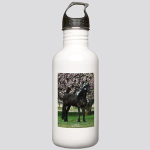 Friesian Sparkles Stainless Water Bottle 1.0L