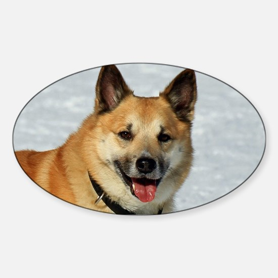 IcelandicSheepdog019 Decal
