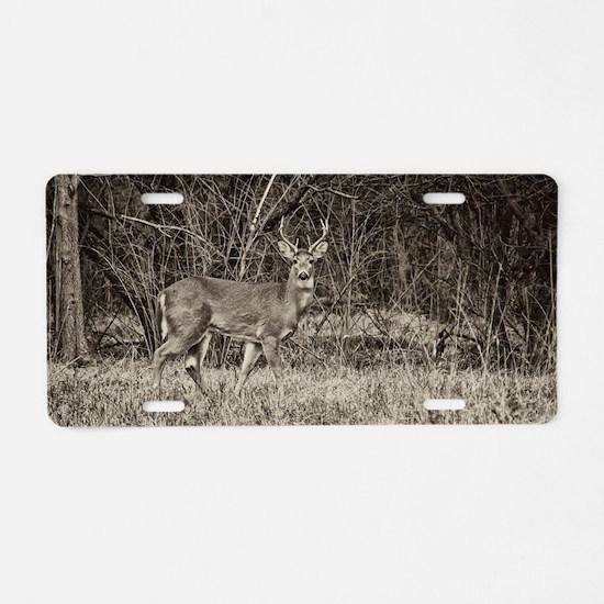 Whitetail Buck Aluminum License Plate