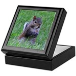 Nibbling Squirrel Keepsake Box