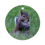 Nibbling Squirrel Ornament (Round)