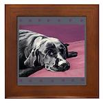 Black Labrador Beauty Sleep Framed Tile