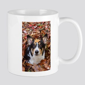 Corgi and Fall Leaves Mugs
