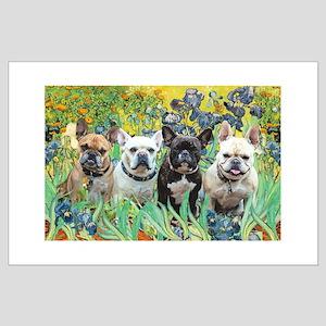 Irises-4 French Bulldogs Large Poster