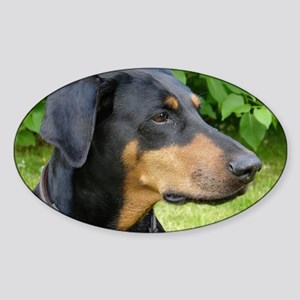 dobie 2 Sticker