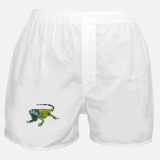 Unique Chameleon Boxer Shorts