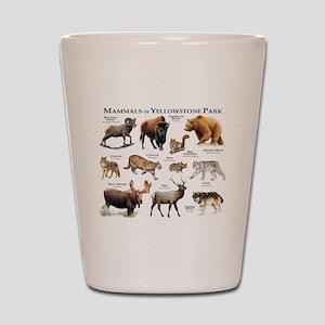 Mammals of Yellowstone National Park Shot Glass