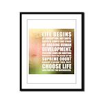 Life Begins At Conception Framed Panel Print