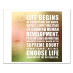 Life Begins At Conception Posters