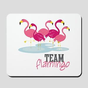 Team Flamingo Mousepad