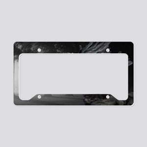 Pegasus License Plate Holder