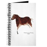 Horse Cave Painting Journal