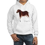 Horse Cave Painting Hooded Sweatshirt