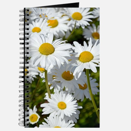 Unique White daisy flower Journal
