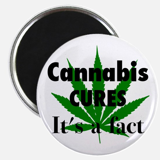 Cannabis Cures Its A Fact Magnet