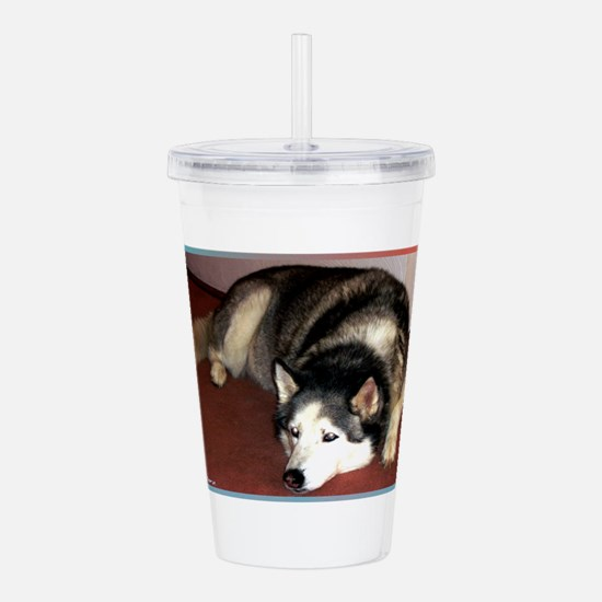 Husky! Dog photo! Acrylic Double-wall Tumbler