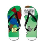 Cat and Angry Birds Flip Flops