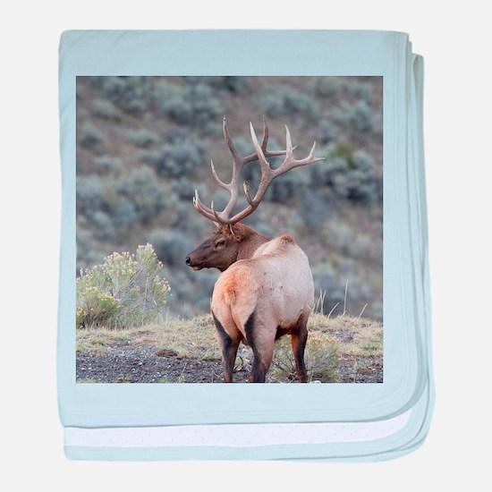 Cute Elk baby blanket