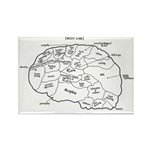 Lawyer's Brain Rectangle Magnet
