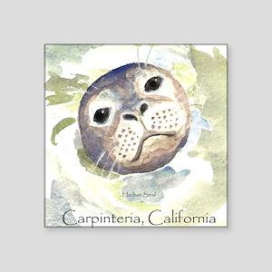 """Harbor Seal Square Sticker 3"""" x 3"""""""
