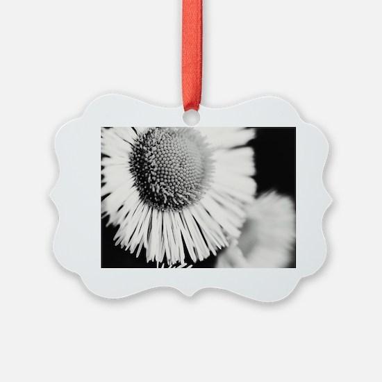 Cute Dandelion Ornament