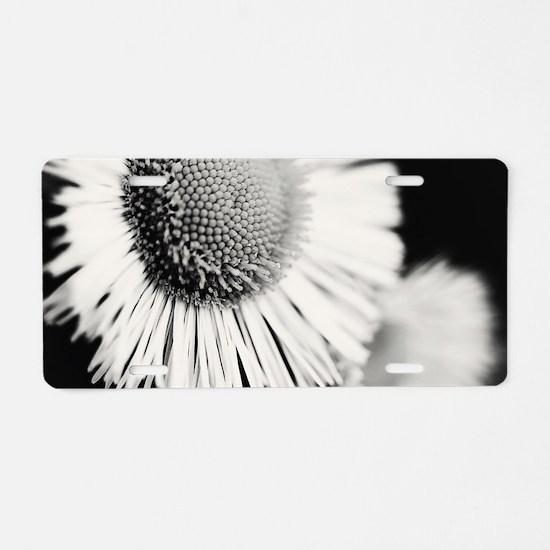 Cute Dandelion Aluminum License Plate