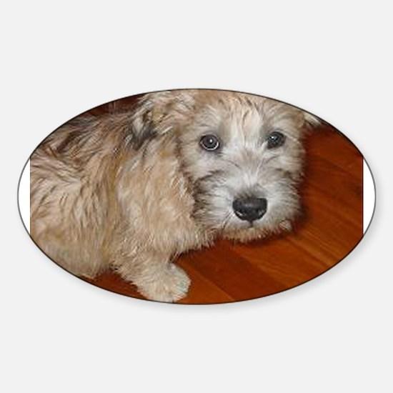 Glen_of_Imaal_Terrier wheaton Decal