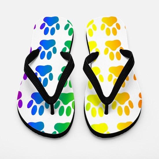 Funny Rainbow Flip Flops
