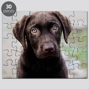 Chocolate Labrador Puppy Puzzle
