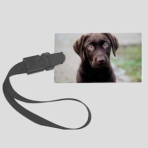 Chocolate Labrador Puppy Large Luggage Tag
