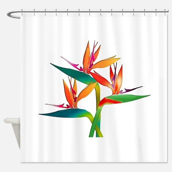 Unique Tropical birds Shower Curtain