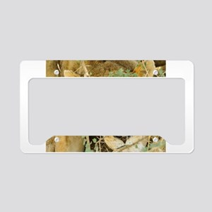 Beautiful Lioness License Plate Holder