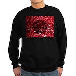 Digital universe Sweatshirt