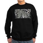 Clones Sweatshirt