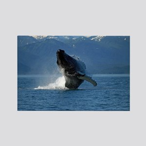 Humpback Whale Breaching Alaska Rectangle Magnet